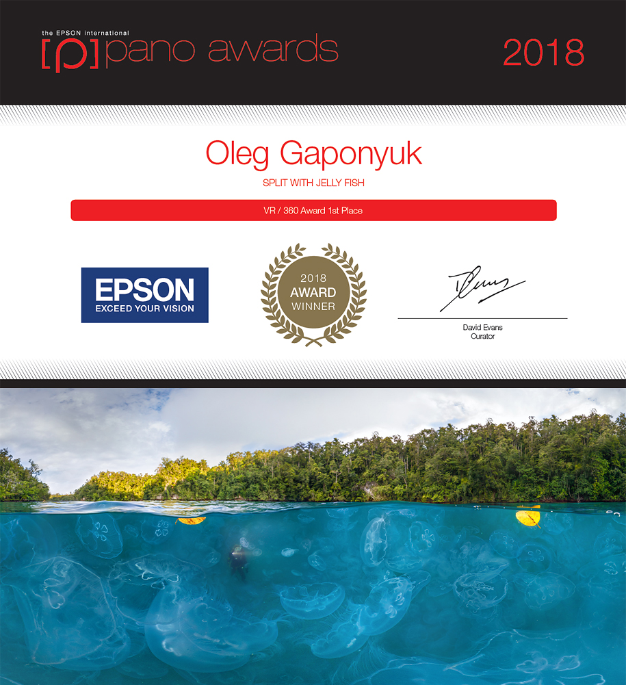 Winner of Epson International Pano Awards 2018