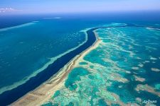 The Great Barrier Reef #34