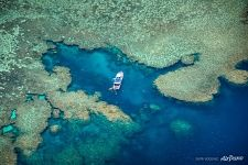 The Great Barrier Reef #31