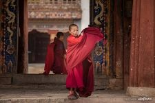 Young monks, Gangtey Gonpa